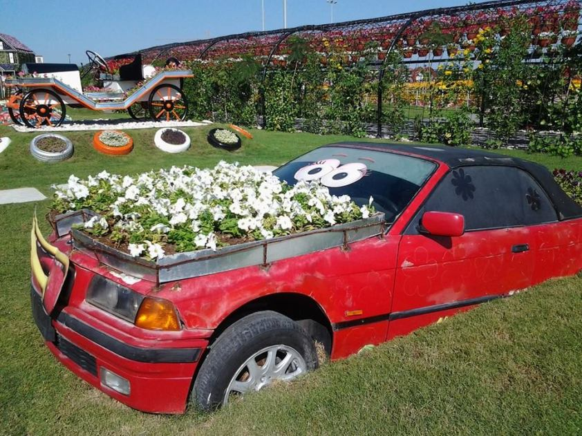 And old cars also make beautiful plant boxes